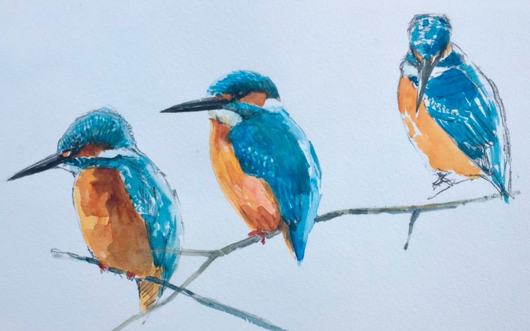 Sketches of the Landscape and Wildlife of Yorkshire – Jonathan Pomroy